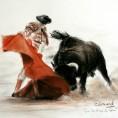 dessin-torero